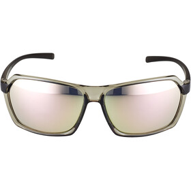 Alpina Finety Glasses transparent-grey